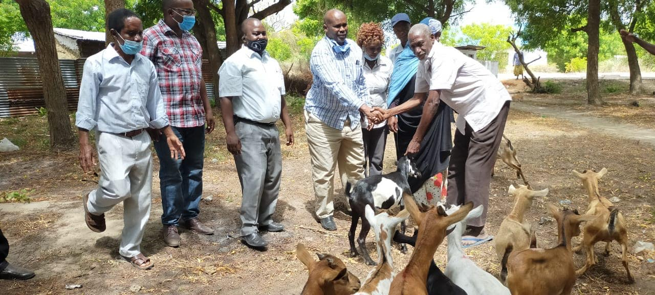 SMALLHOLDER AND PASTORAL FARMERS BENEFIT FROM IMPROVED LIVESTOCK BREEDS