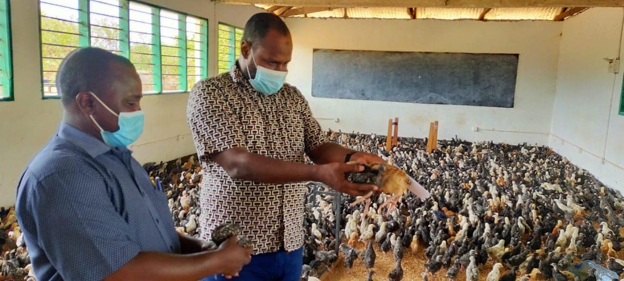 LAMU COUNTY GOVERNMENT THROUGH KENYA CLIMATE SMART AGRICULTURE PROJECT SPUR FOOD AND INCOME SECURITY FOR POULTRY FARMERS