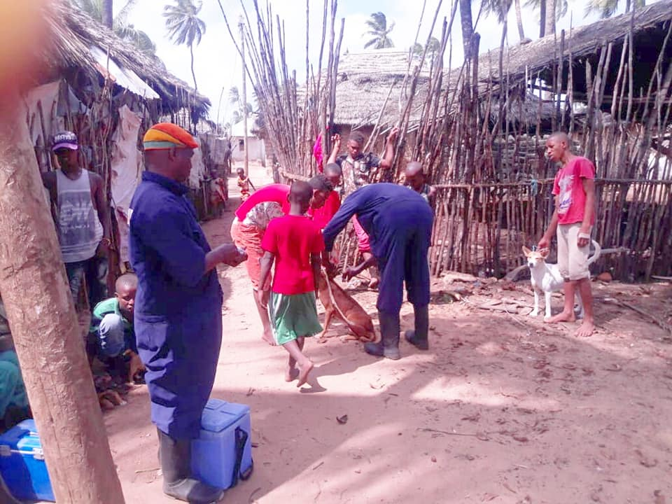MASS VACCINATION OF DOGS AND CATS IN PATE ISLAND